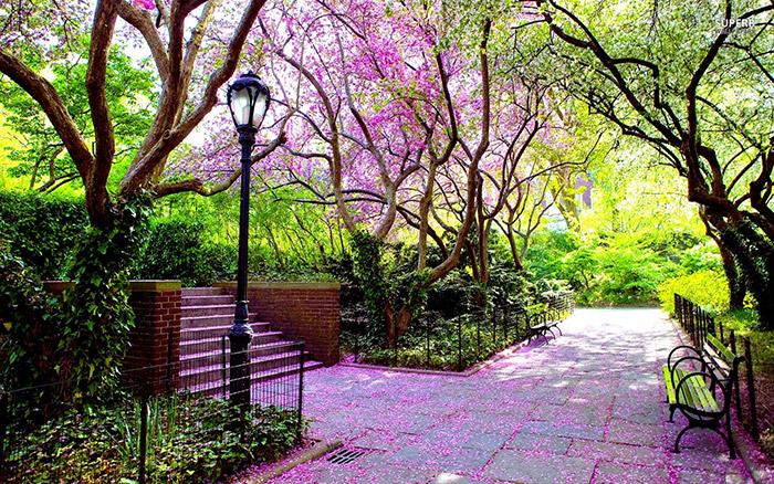 دیدنیهای سنترال پارک نیویورک