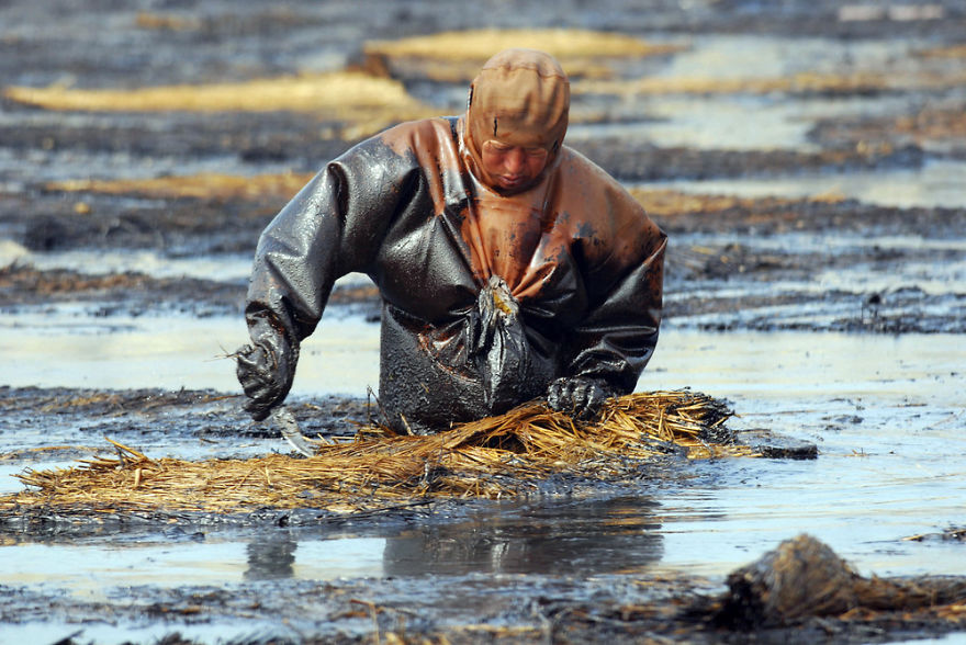 Labourer Tries To Clean Up Oil From Water, Dalian, Liaoning