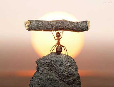 تقویت اراده,راه های تقویت اراده, اراده قوی