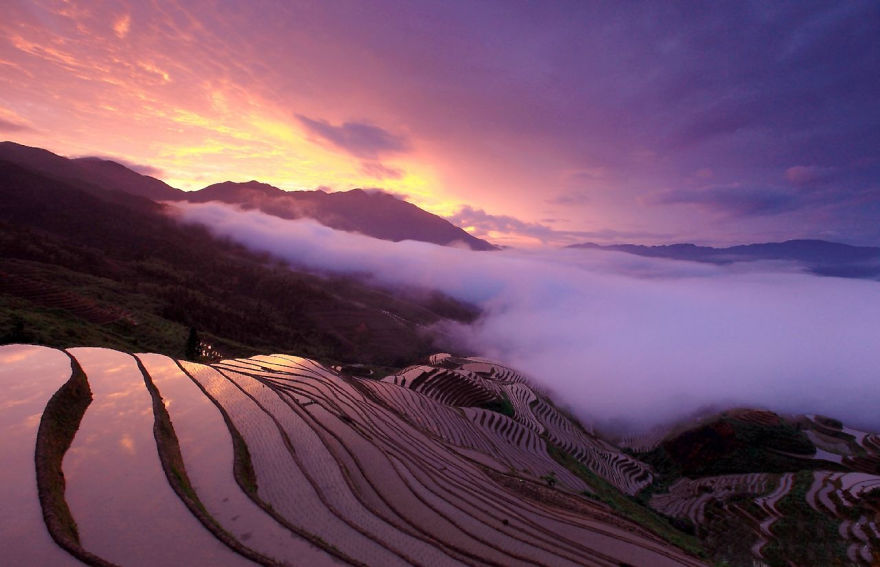 The Longsheng Rice Terraces