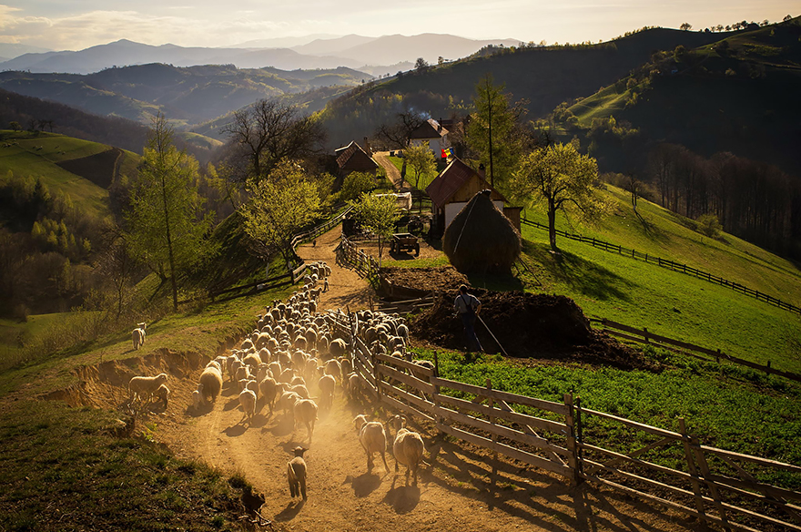 Spring Afternoon In The Hills Of Holbav Village