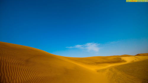 golden desert wallpaper