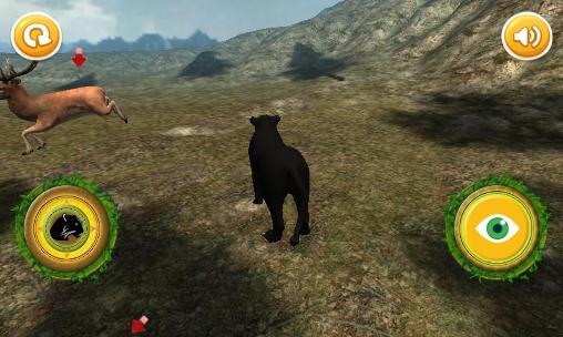 4_real_panther_simulator