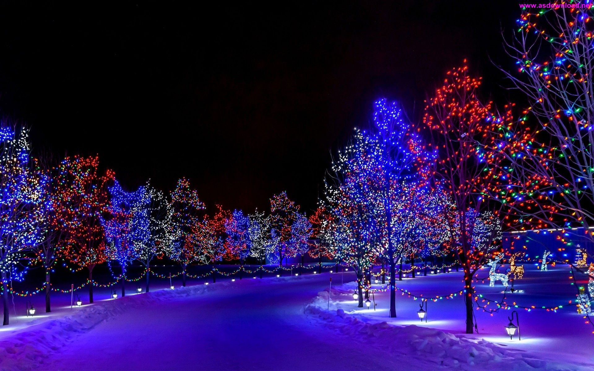 New Year Lights Trees Ornaments Wallpaper دانلود والپیپر جدید 2015