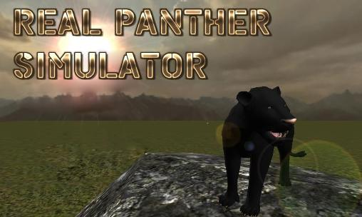 real_panther_simulator